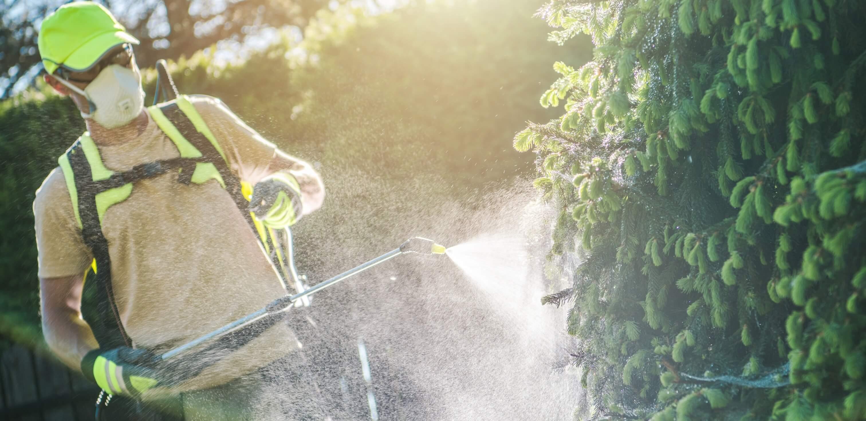 Fotografia de um homem colocando agrotóxicos em plantas com os devidos equipamentos de segurança.
